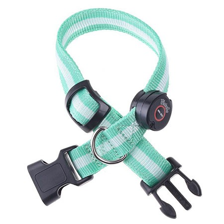 led-nylon-collar