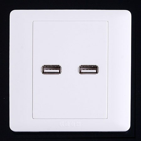 2 x USB Ports Wall Plate Coupler Outlet Socket Panel
