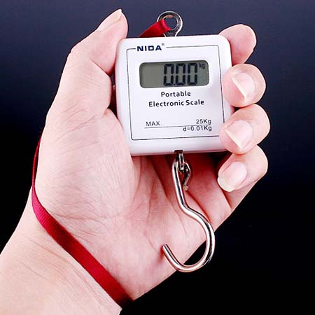 2Kg /0.1g Digital Electronic Balance Weight Scale